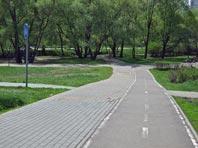 """Природный парк в пойме реки Городня превратили в пустырь при """"благоустройстве"""""""