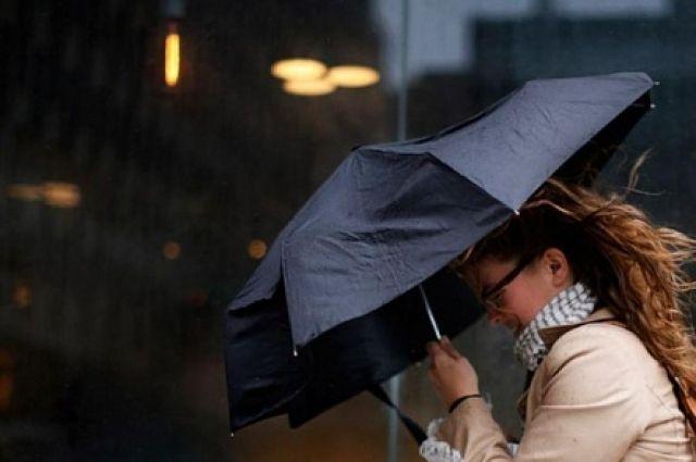 Гроза и сильный ветер ожидаются в Москве до утра субботы – МЧС
